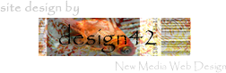 design42 New Media Web Design - (828) 692-7270