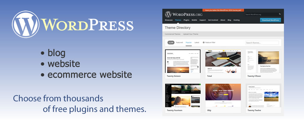 WordPress - blog, website or robust ecommerce store - Choose from thousands of free plugins and themes - design42 New Media Web Design - Complete Solutions, On time. On budget. 828-692-7270